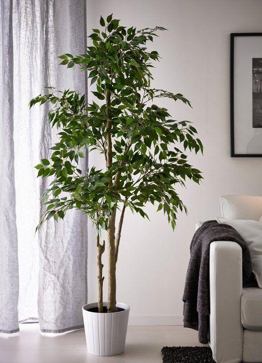 LARGE ARTIFICIAL PLANTS